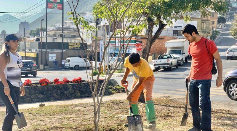Suman 20 mil árboles sembrados este año por el gobierno de Monterrey